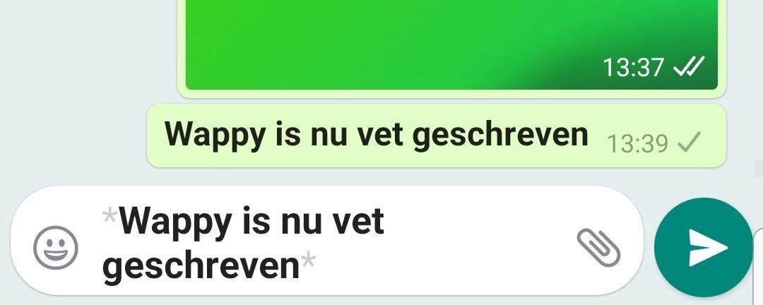 WhatsApp Business Automatisch Bericht Vet