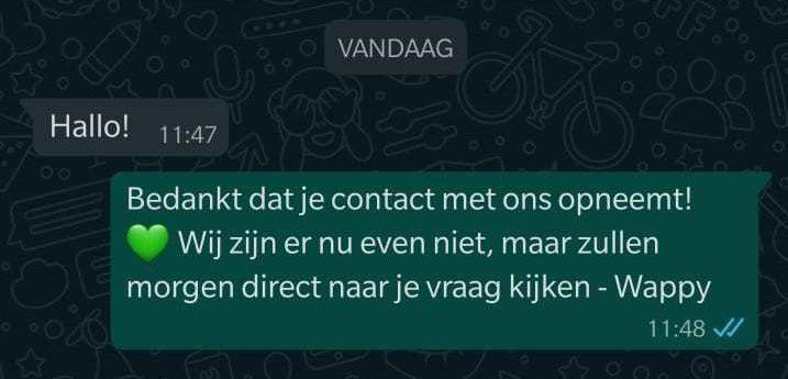 WhatsApp Business oproepen automatisch bericht